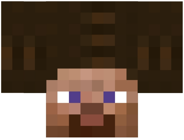 Minecraft Steve with Afro.jpg